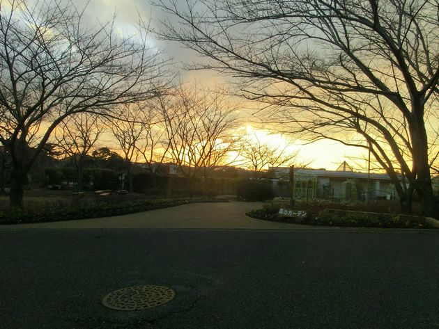 キレイな夕焼けも見ることができます